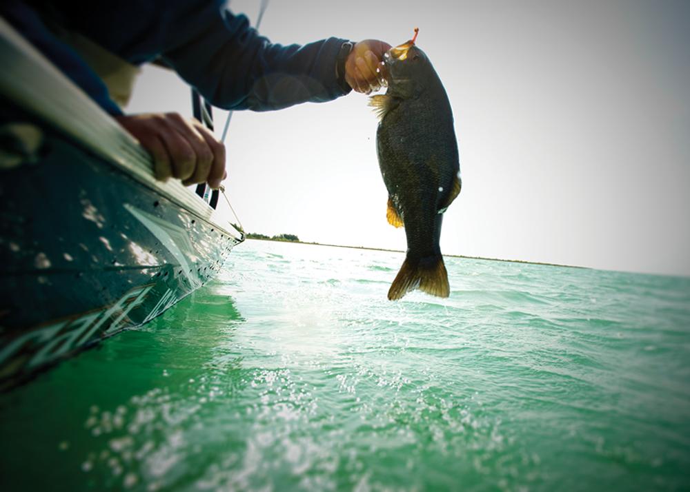 Fish on the line in Michigan Lake