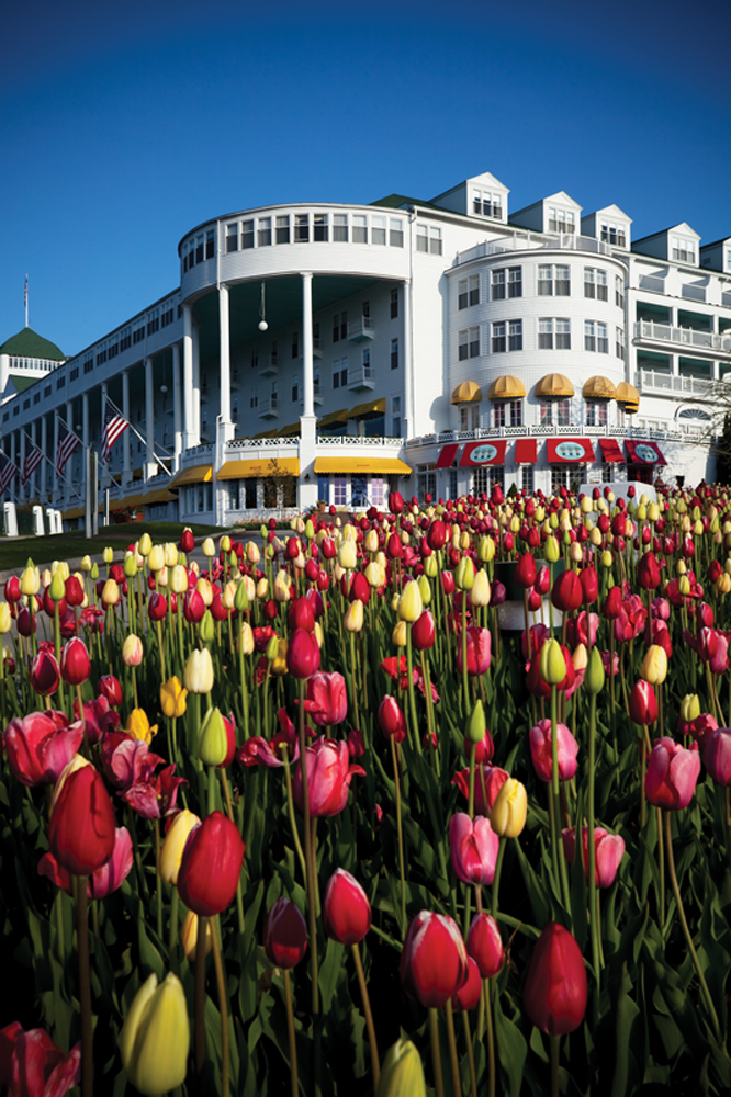 Grand Hotel grounds covered in tulips