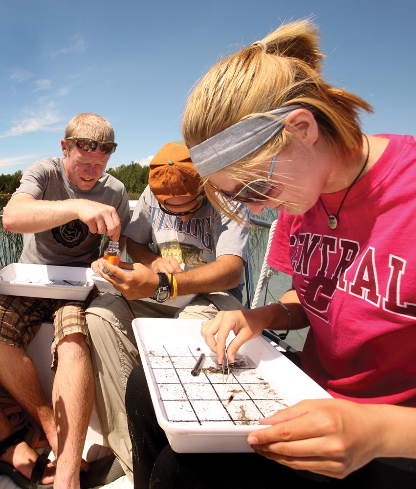 Beaver Island Researchers