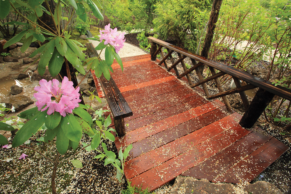 Japanese Garden Walk