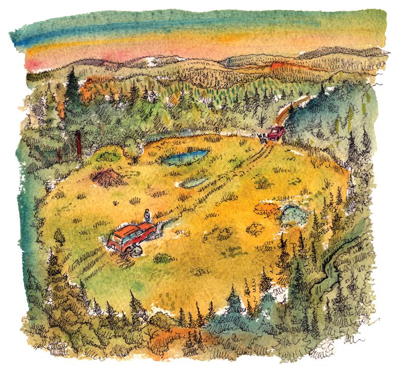 Beaver Meadow