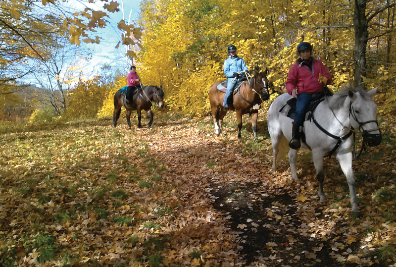 Heritage Hills Horseback Riding