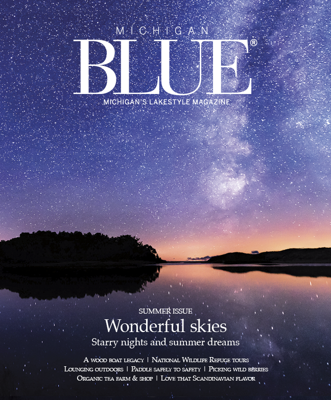 Michigan Blue Summer 2019 cover