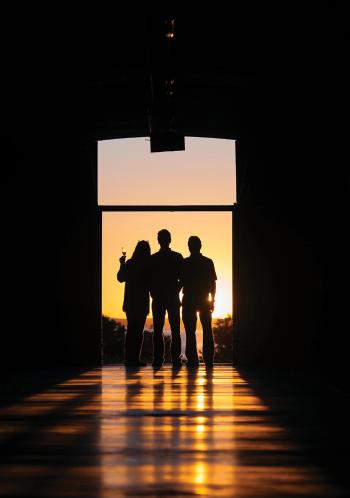 Mari Vineyards silhouette