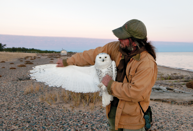Chris Neri and snowy owl