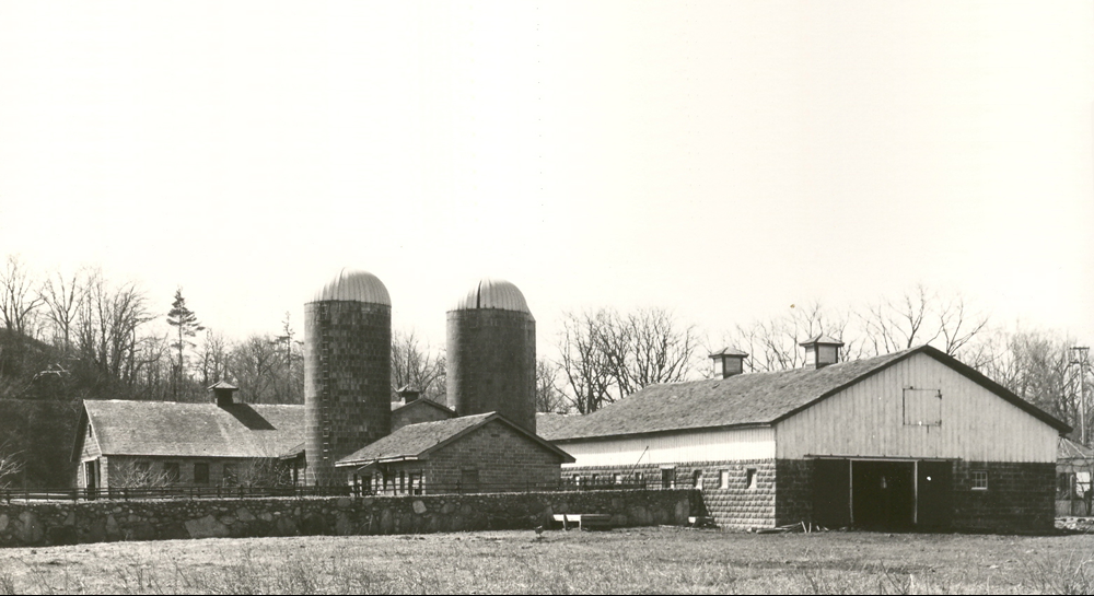 Calf Barn From Back View