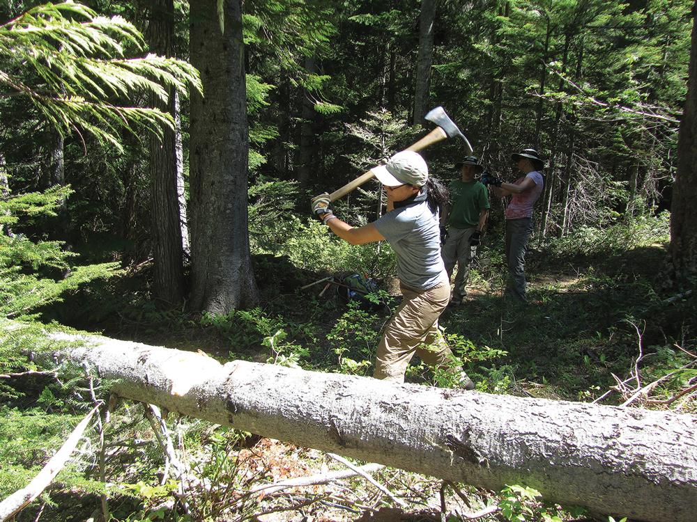 E.Shaw Cascades Chopping Wood