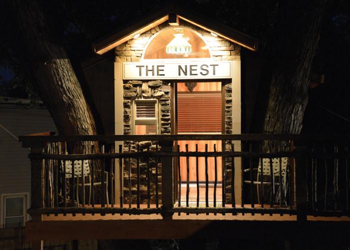 Nest treehouse