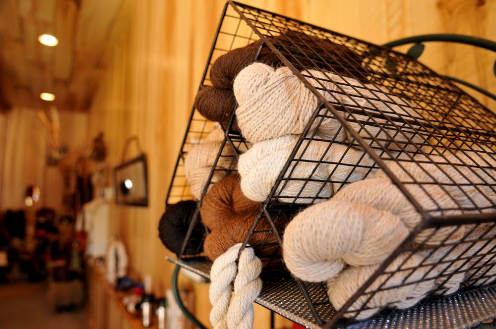 alpaca yarn store