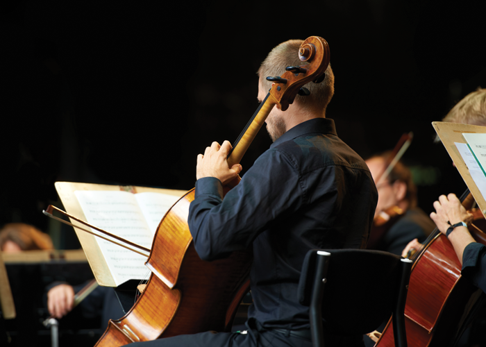 iStock Orchestra