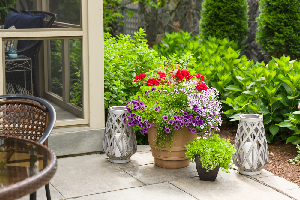Container gardens are visually striking, versatile and can be repositioned easily.